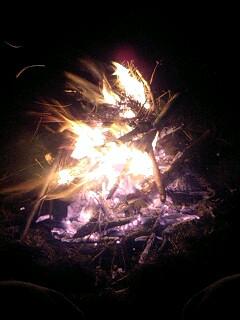 今週末も焚き火