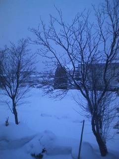 ふわふわな雪